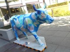 Image_cow1_3