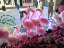 081227_pinkflamingo_40kb