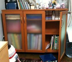 20100210_shelf01